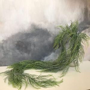 Куст водорослей «вайт»