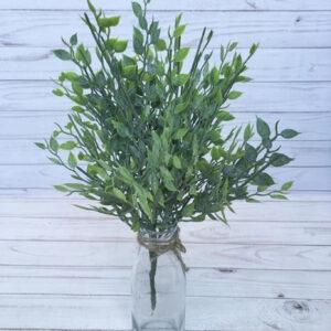Куст зелени бамбука