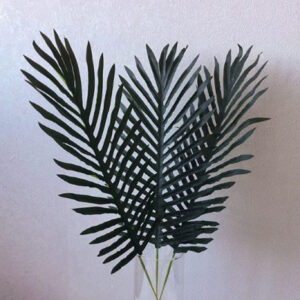 Лист финиковой пальмы