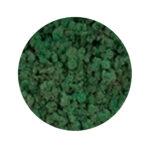 Mint green moss купить в минске мох