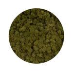 Olive Moss купить в минске мох