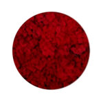 Red Moss купить в минске мох
