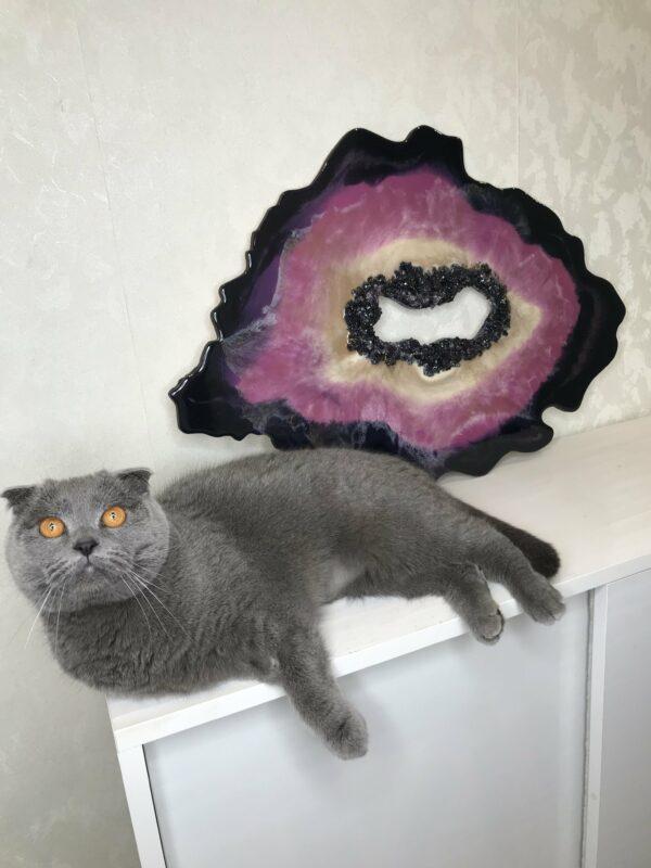 Кот на фоне среза камня желды